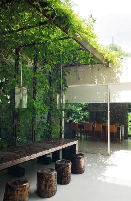 plante decoration veranda