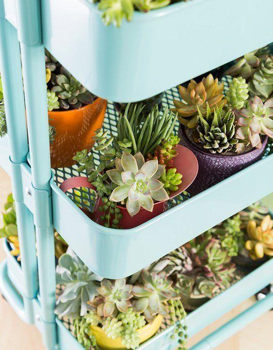 Plante d int rieur cocon de d coration le blog for Ikea garden shelf