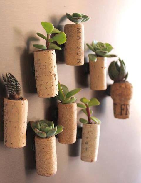 Inspiration cactus et plantes cocon de d coration le blog for Les plantes et le gel