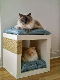 10 diy pour les chats cocon d co vie nomade. Black Bedroom Furniture Sets. Home Design Ideas