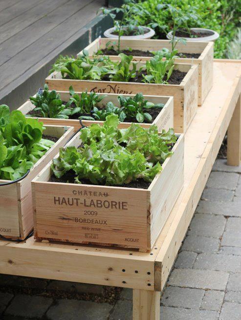 10 id̩es r̩cup' pour le jardin РCocon de d̩coration: le blog