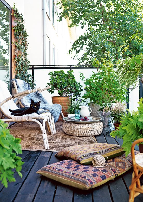 mini jardin idee bladon deco