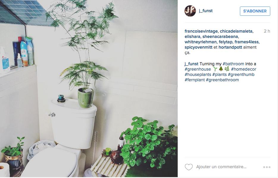 deco toilettes plantes