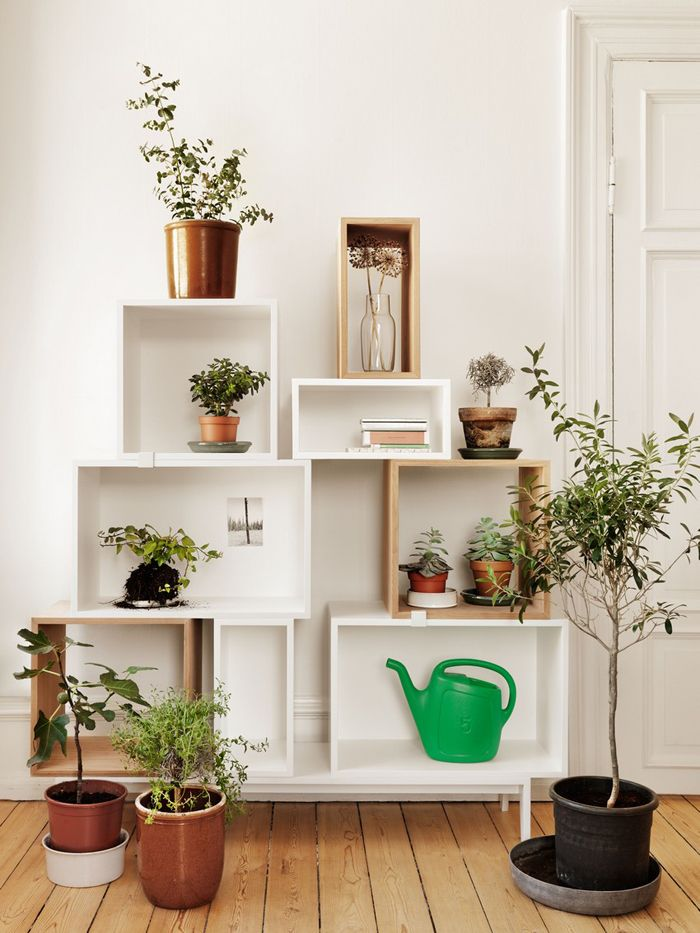 5 conseils d co pour mettre des plantes dans votre int rieur cocon d co vie nomade. Black Bedroom Furniture Sets. Home Design Ideas