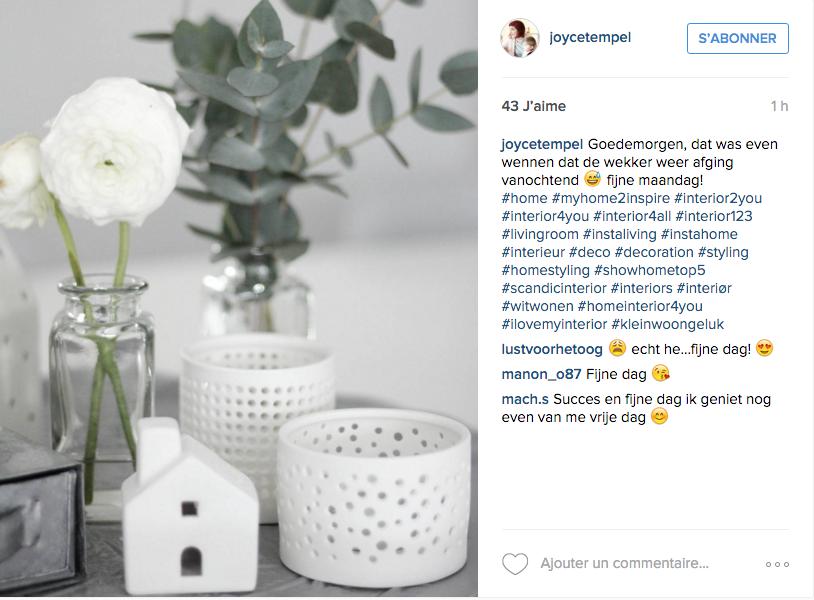 instagram idee deco salon detail blanc fleur vase