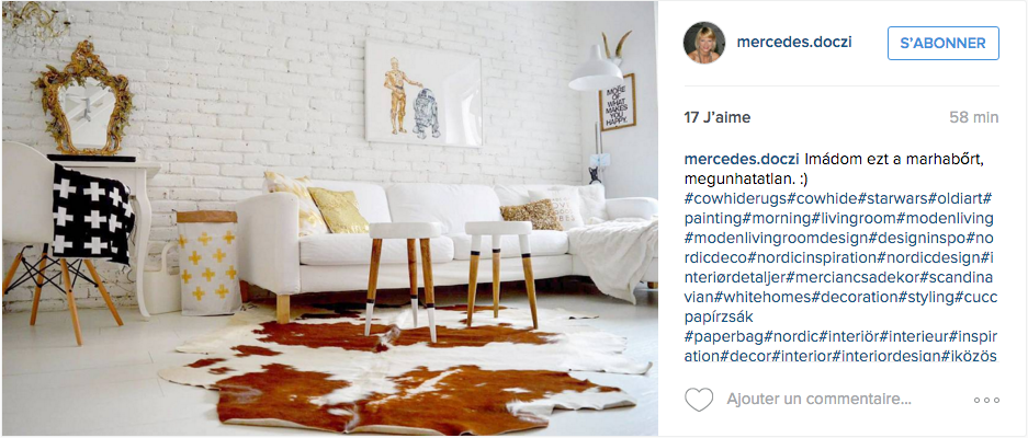 instagram idee deco salon feminin scandinave
