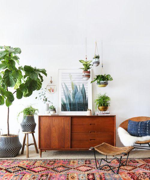 5 conseils d co pour mettre des plantes dans votre. Black Bedroom Furniture Sets. Home Design Ideas