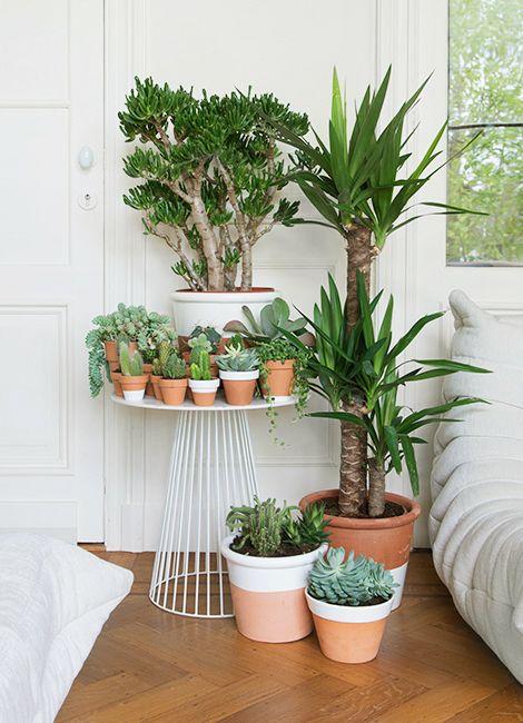 des id es pour personnaliser ses pots de fleurs cocon de. Black Bedroom Furniture Sets. Home Design Ideas