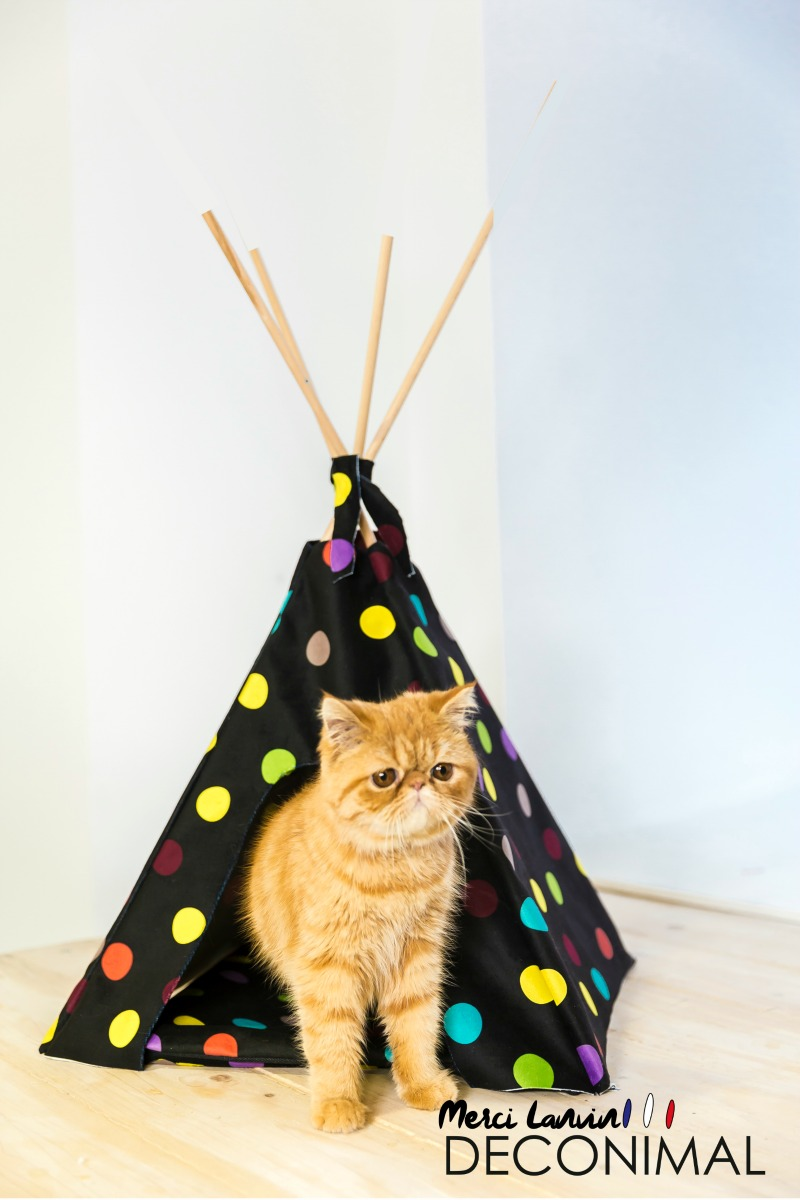tipi chat design deco textile