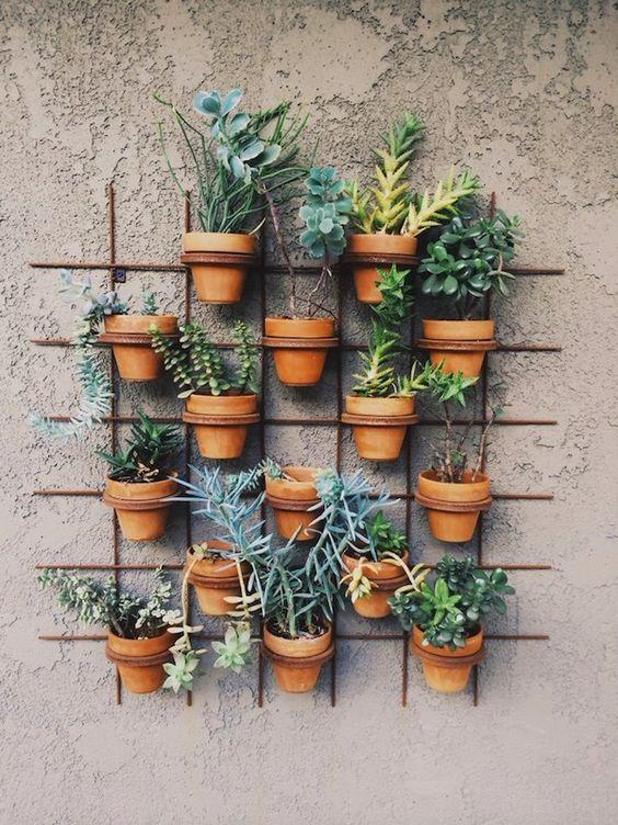 deco jardin idee plante mur