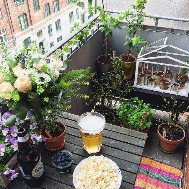 espace exterieur balcon idee deco plantes