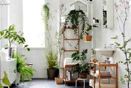 inspiration deco salle de bain plantes