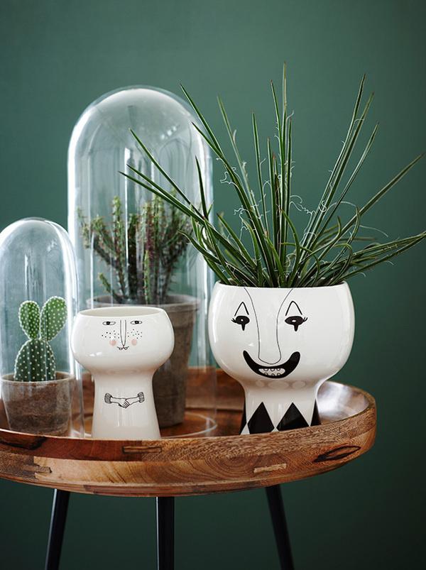 deco chambre vert details plante cactus