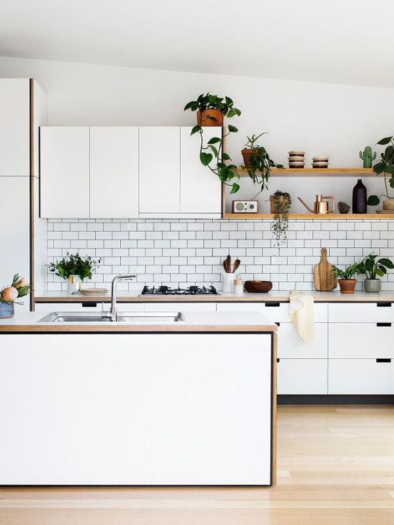 deco cuisine contemporaine plante kinfolk