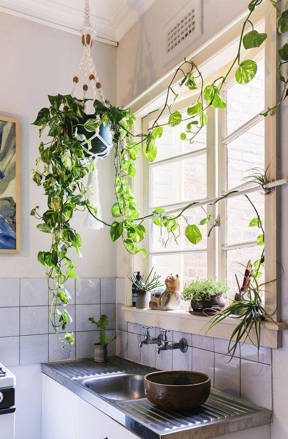 deco kinfolk cuisine plante idee decoration interieure