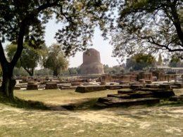 inde sarnath decouverte visite varanasi bouddha