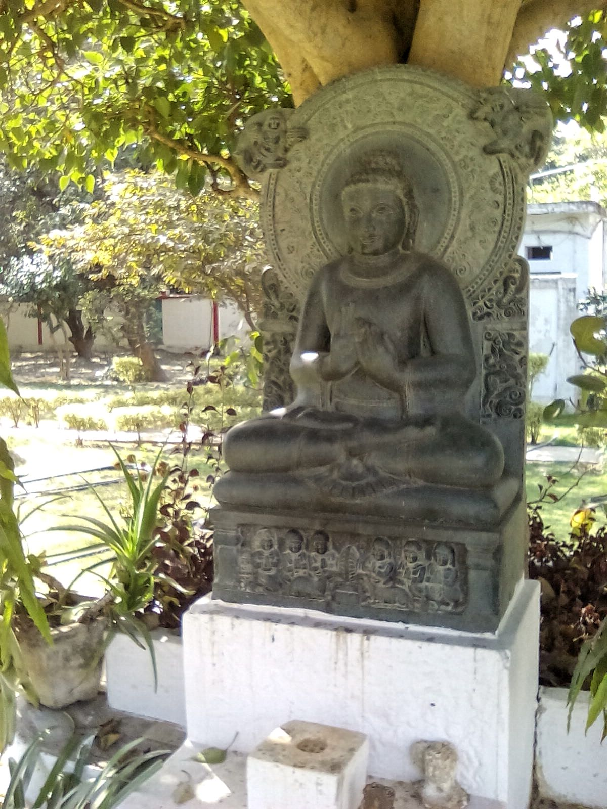 statue bouddha pierre sarnath temple indo japonais jardin