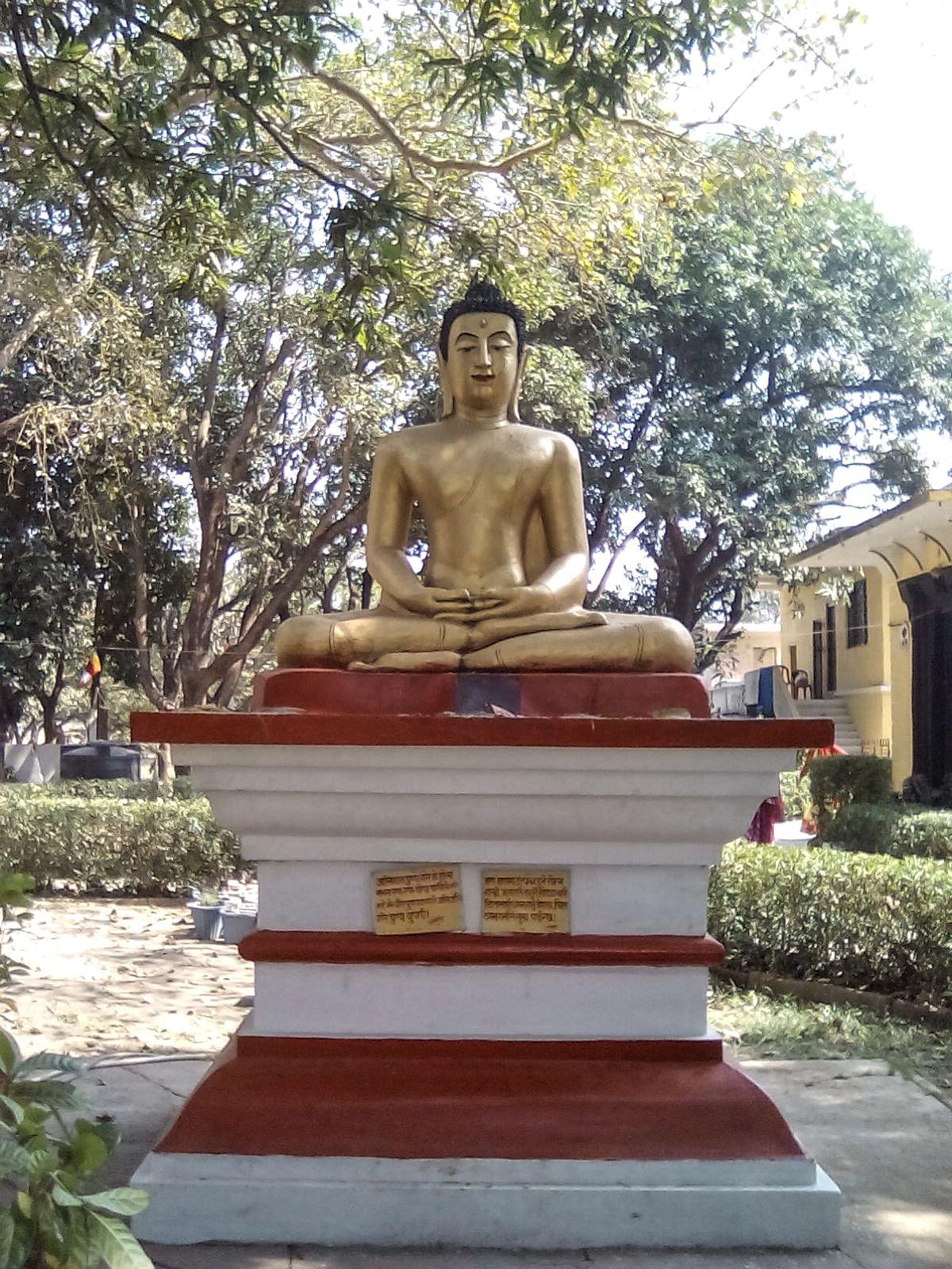 bouddha position lotus nepal lumbini
