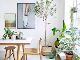 inspiration decoration interieur kinfolk idees