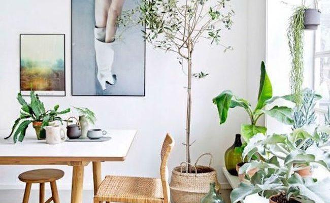 inspiration decoration interieur kinfolk idees