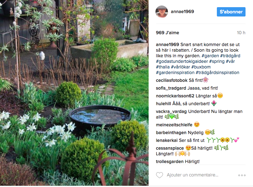 inspiration jardin deco instagram plante