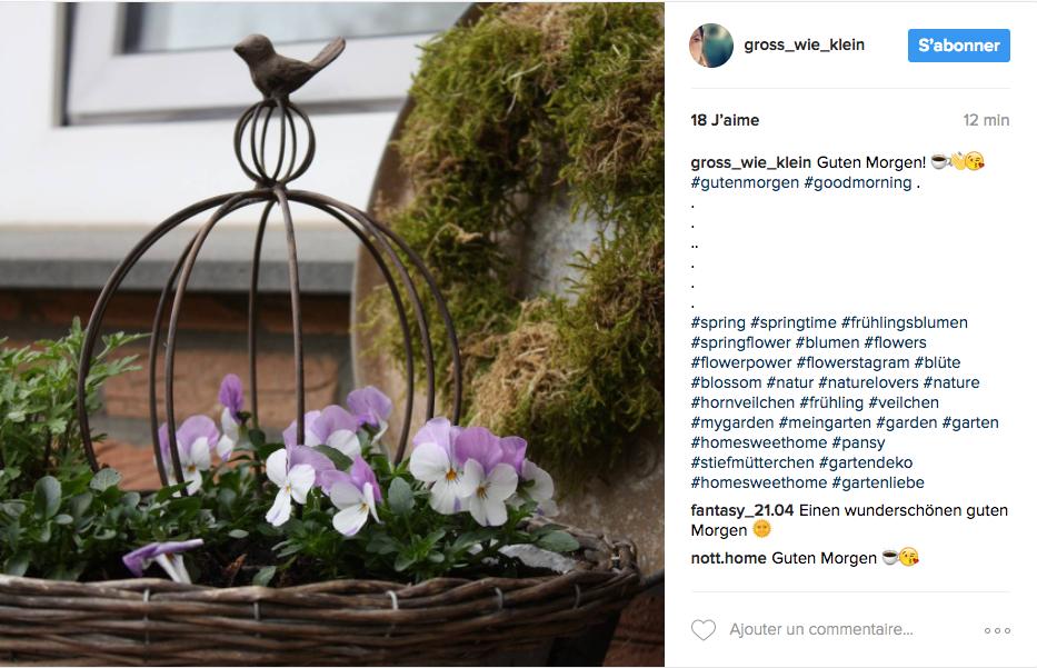 inspiration jardin deco romantique