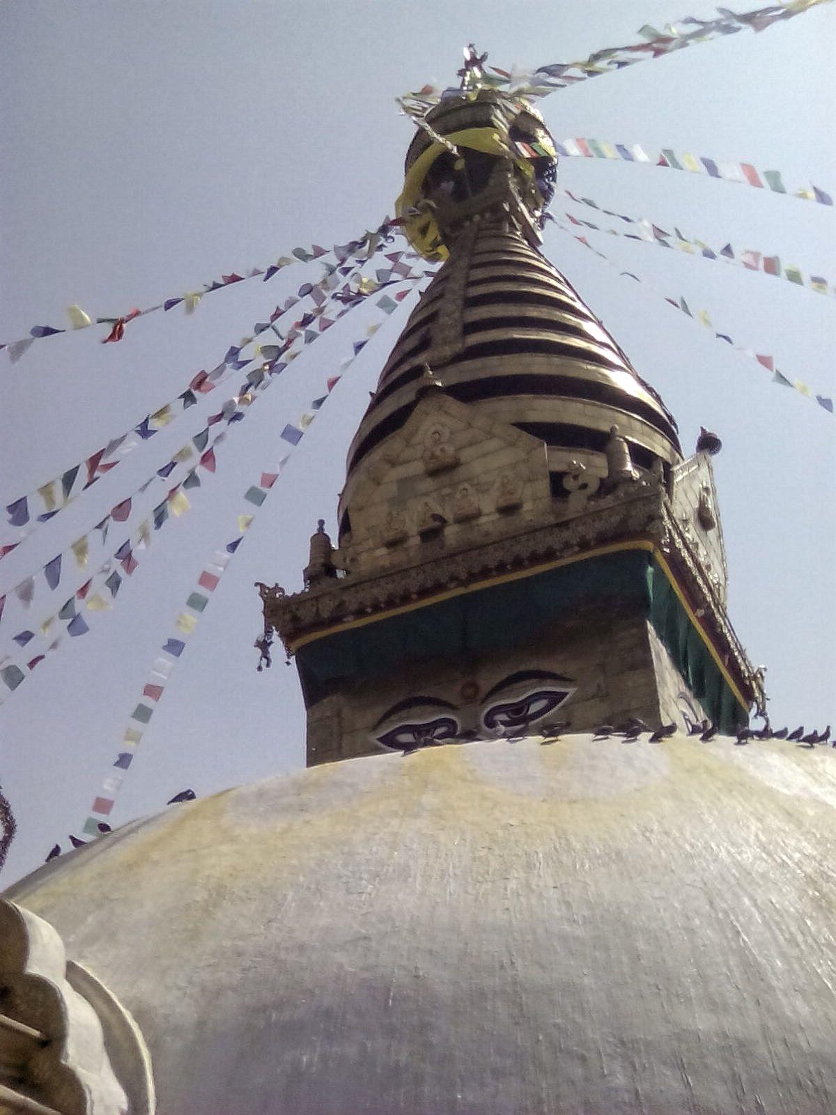swayambhu stupa monkey temple katmaandou nepal