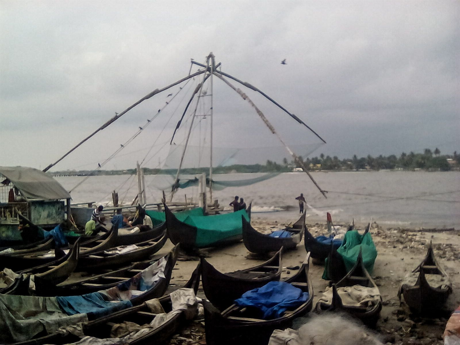 fort cochi peche poisson visite voyage vie nomade