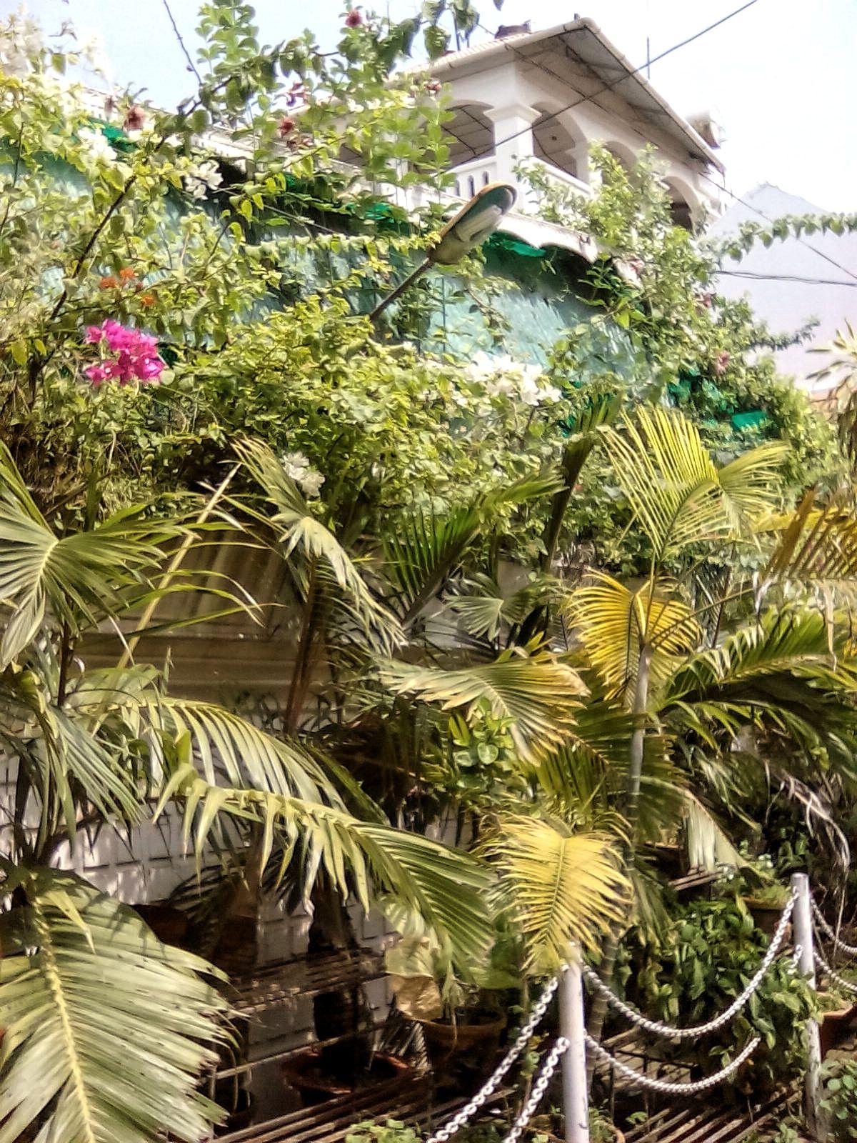fort cochin decouverte voyage vie nomade vacances