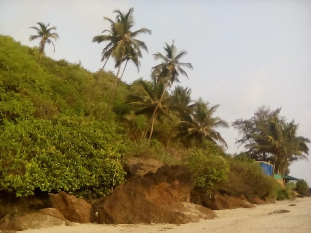 goa inde du sud plage vacance