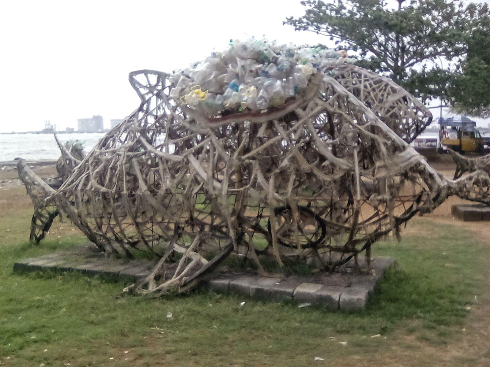 kerala fort cochin sensibilisation dechet ecologie