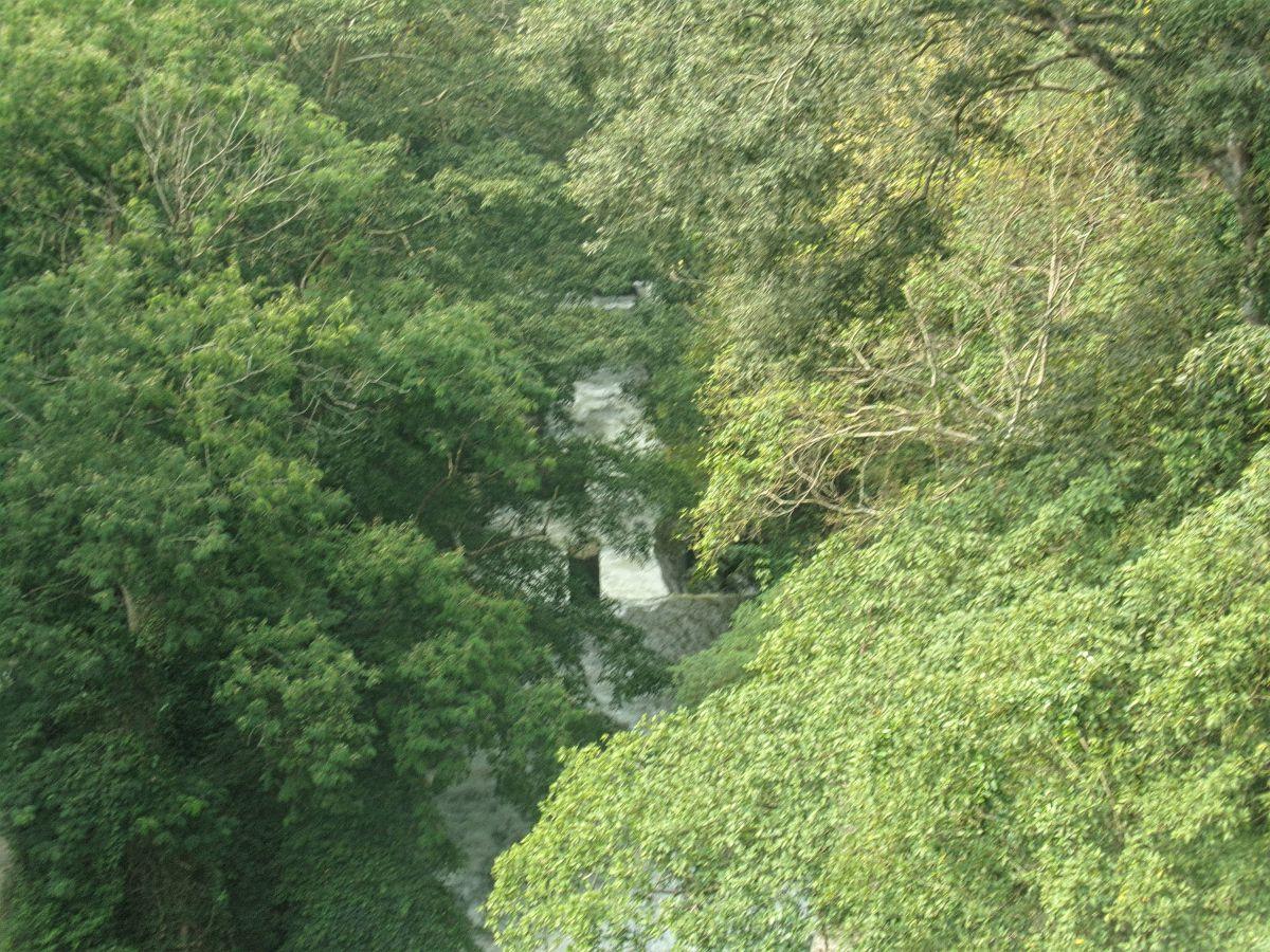 kerala kumily cascade barrage foret