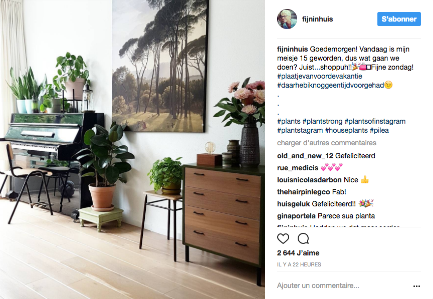 deco kinfolk plante verte salon piano