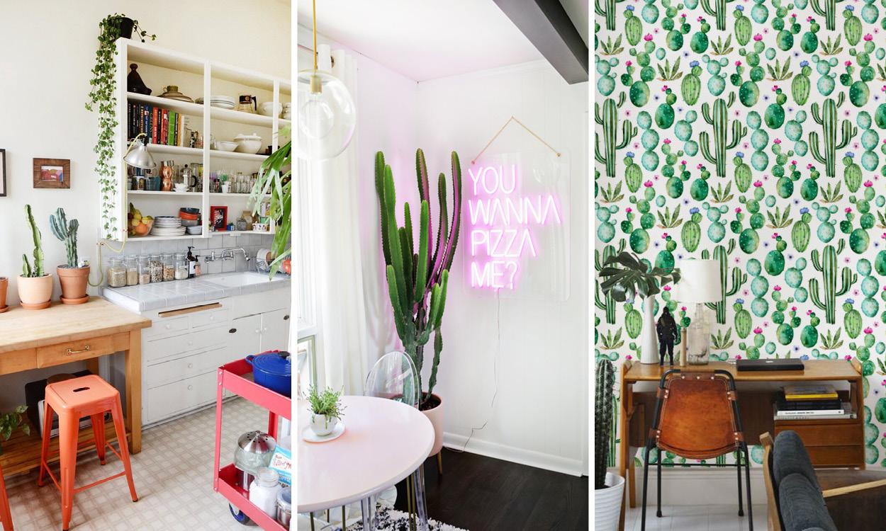 decoration maison cactus inspiration