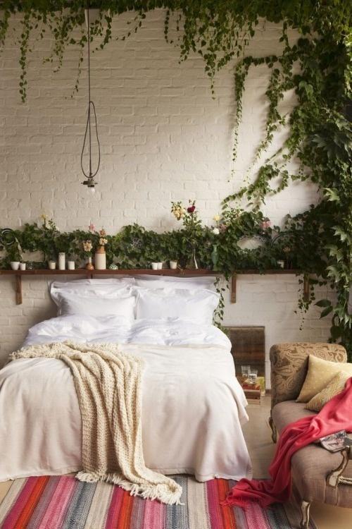 deco chambre champetre plante