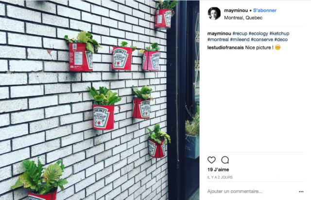 deco recup jardin instagram boite conserve
