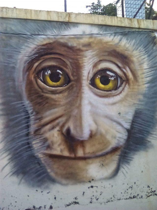 georgetown penang streetart culture gratuite