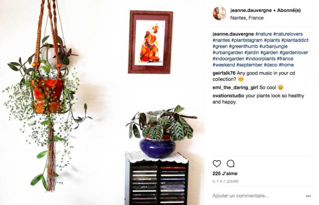 decoration interieure plante suspendue inspiration