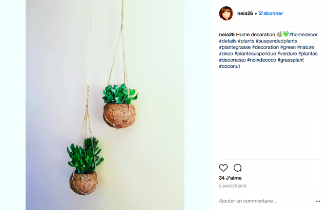 idee decoration interieure plante suspendue