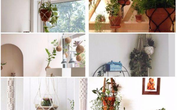 inspiration deco plante suspendue instagram idee