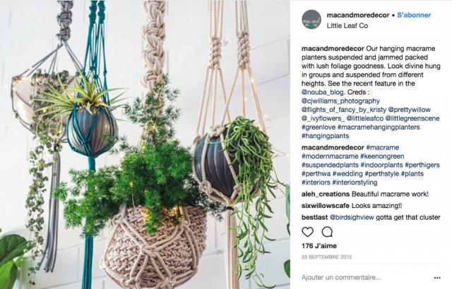 plante suspendue decoration inspiration
