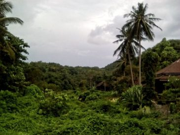 thailande koh lanta paradis nature et mer