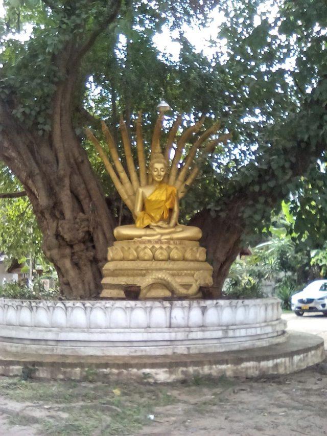 bouddha sculpture luang prabang laos