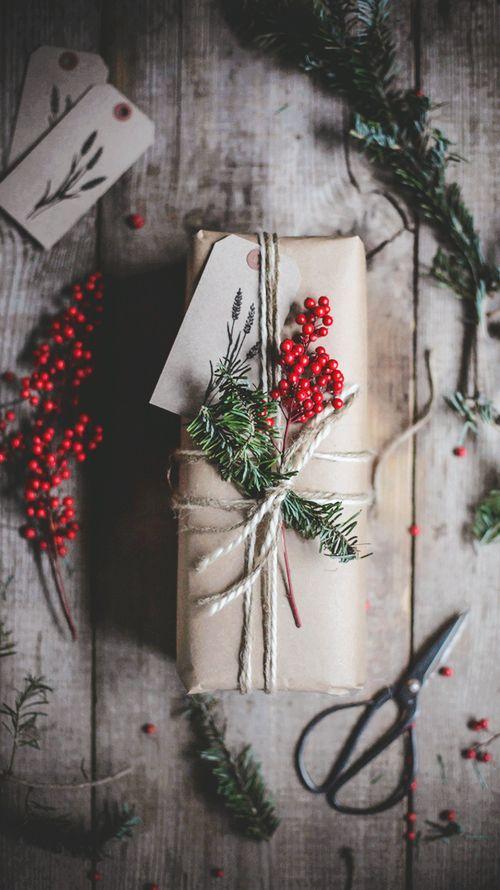 emballage cadeau noel plante inspiration
