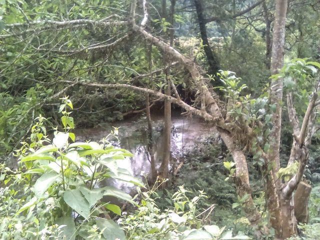 laos nature montagne cours deau