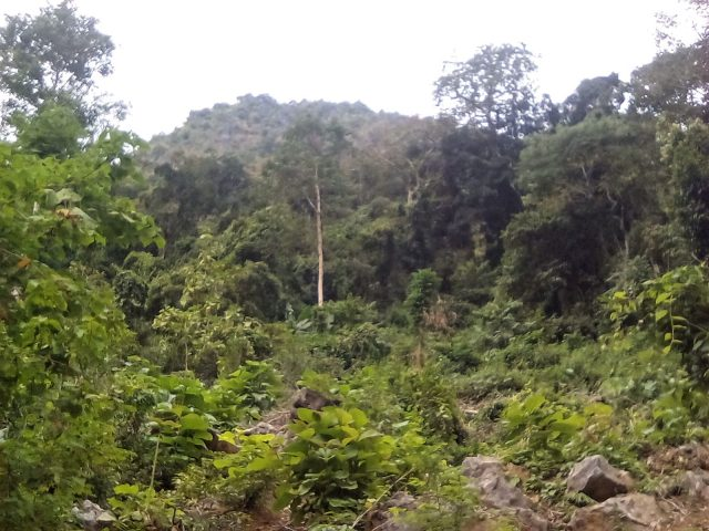 nature laos nong khiaw montagnes