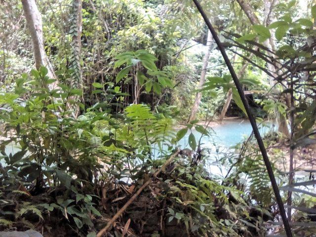 cascade waterfall luang prabang laos