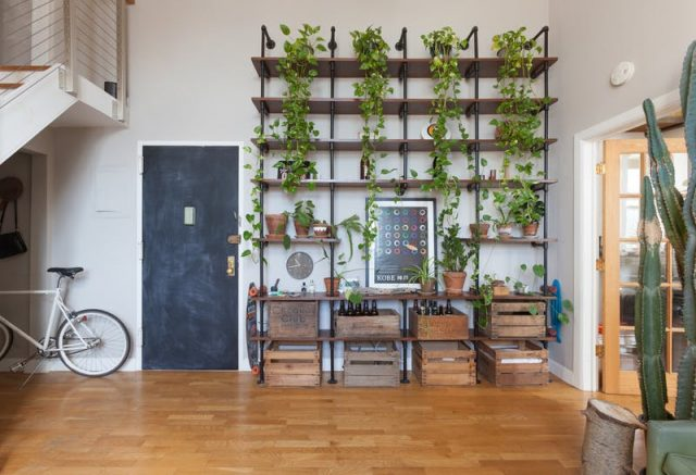 Des plantes vertes dans le salon cocon de d coration le for Idee deco plante interieur