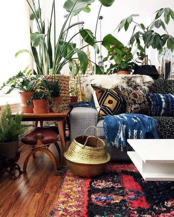 salon deco plantes vertes