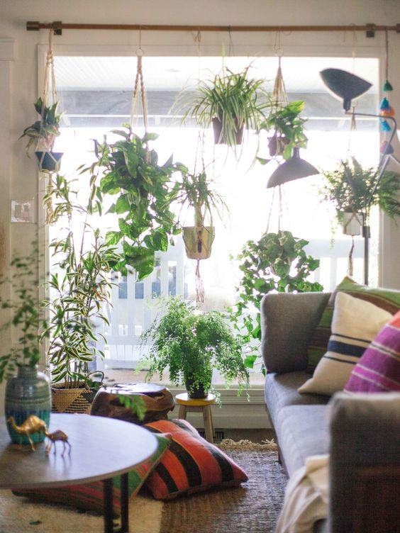 salon decoration plantes vertes